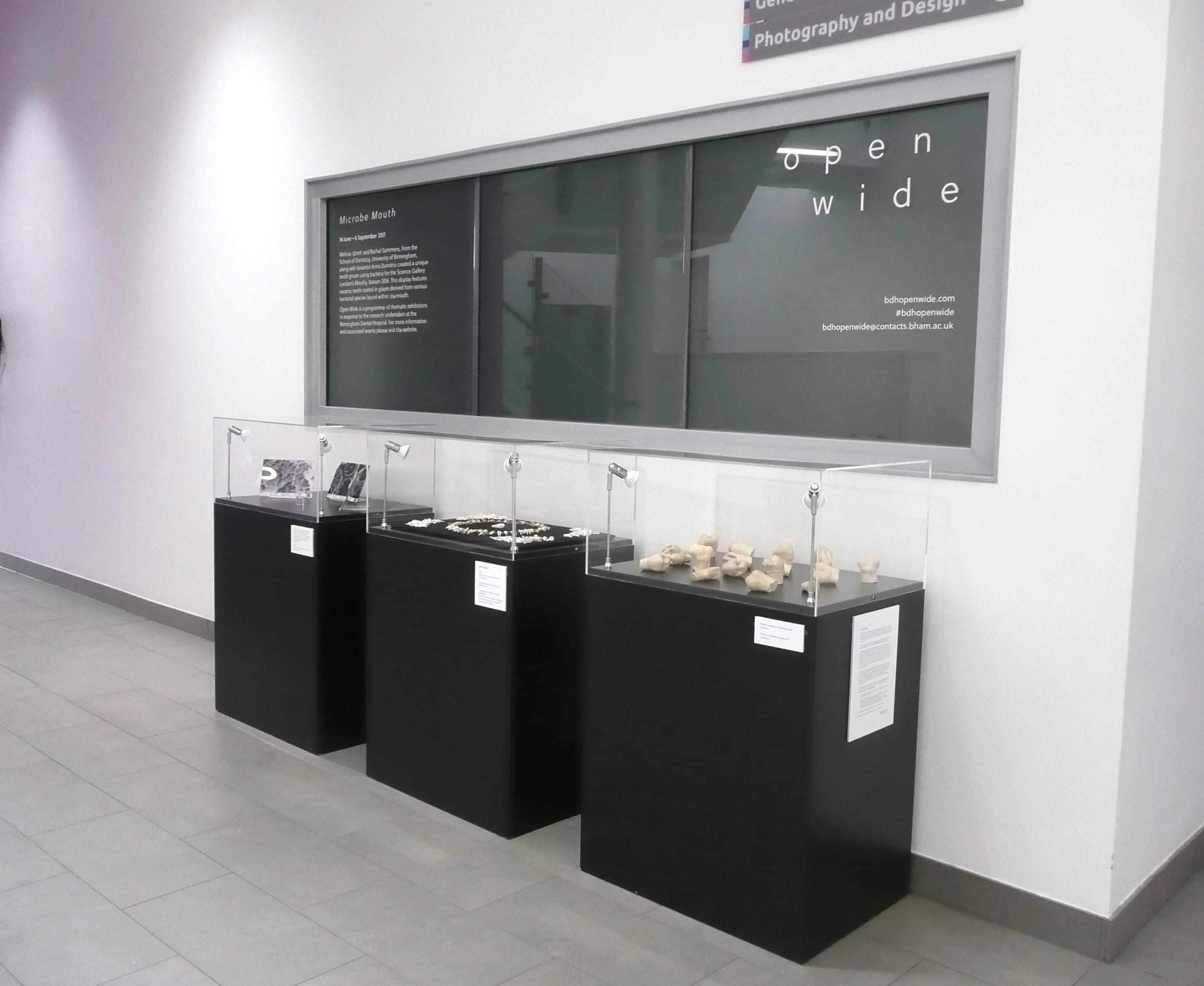 Exhibition Display Cabinets : Birmingham hispital acrylic display cases exhibition plinths